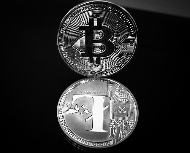 Litecoin o Bitcoin ¿Cuál es más rentable?